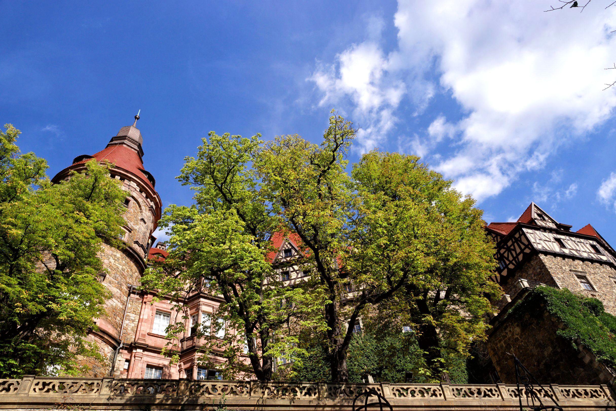 Tarasy zamkowe w Książu